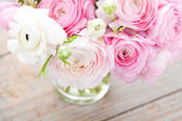 Pink ranunculus — Photo
