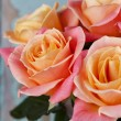 Beautiful roses — Stock Photo #38259085