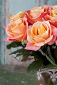 Beautiful roses — Foto de Stock