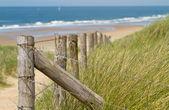 Poles leading you to the sea — Stock Photo