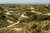 The dunes and North sea [Netherlands] — Stock Photo