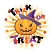 Halloween pumpkin Jack o lantern wearing halloween wich hat — Stock vektor