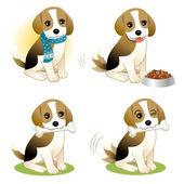 Set di cucciolo di beagle — Vettoriale Stock
