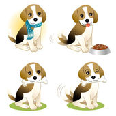 Set of Beagle puppy — Vector de stock