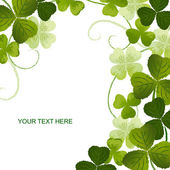 Clover background on white — Vector de stock
