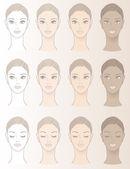 美丽的女人的肤色的图表 — 图库矢量图片