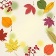 Background with autumn leaves — Imagen vectorial