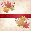 Stock Vector: Autumn Maple leaves background with grunge texture