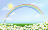 Rainbow and daisies against blue sky — Vector de stock