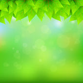 Natural green background — Stock Vector