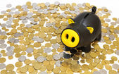 Piggy bank on a background of the coins — Foto de Stock