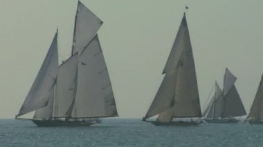 Old sail regatta 14 — Stock Video