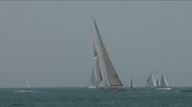 Alte segel regatta 16 — Stockvideo