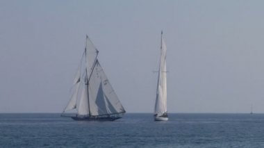 Old sail regatta 26 — Stock Video