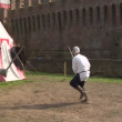 Medieval sword duel — Stock Video #24878129