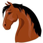 Head of brown horse — Stock Vector
