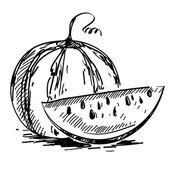 Vector illustration of ripe watermelon  — Stock Vector