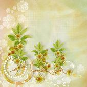 Blomma bakgrund för designer — Stockfoto