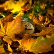 Autumn composition with hours — Stock Photo