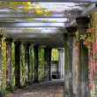 Stock Photo: Colonnade in old abandoned garden