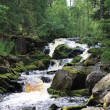 River in mountain forest — Stock Photo