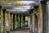 Colonnade in an old abandoned garden — Stock Photo