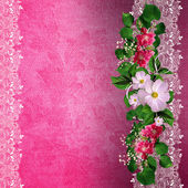 Pink background with floral border — Stock Photo