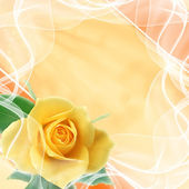 Beautiful wedding background — Stock Photo