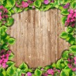 Background texture of wooden photo frames and green leaves — Stock Photo