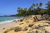 Turtle beach — Stock Photo