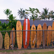 Surfboard fence — Stock Photo #16209847