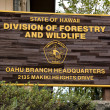 Forestry and wildlife division — Stock Photo