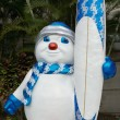 Frosty Surfer — Stock Photo #17702597