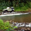 Sport Utility Crossing Stream - Stock Photo