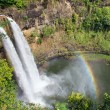 Wailua Falls — Stock Photo #19498817