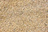Hawaiian beach sand — Stock Photo