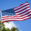 American flag waving — 图库照片