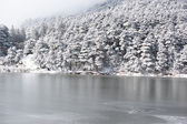 Winter, snow scene,Frozen lake, Famous scenic area, the Mount Lu of China — Stock Photo