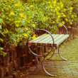 Outdoor chair in garden — Stock Photo