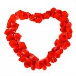 Rose Flowers Heart Over White. Valentine. Love — Stock Photo #19359289