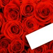 Stock Photo: Red roses with blank gift tag.