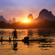 Boat with cormorants birds, traditional fishing in China use tra — Stock Photo #22389345