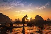 Båt med skarvar fåglar, traditionellt fiske i kina använder tra — Stockfoto
