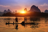 Boat with cormorants birds, traditional fishing in China use tra — Stock Photo