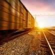 Freight train motion blur — Stock Photo #23689399