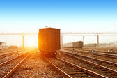 Reight train passing by on sunset beam — Stock Photo