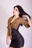 Studio portrait of a beautiful slim brunette girl in a short tight black dress with leopard bolero — Stock Photo