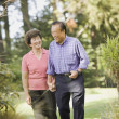 Senior Asian couple walking in woods — Stock Photo