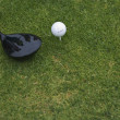 Still life of golf club and ball on the green - Stock Photo