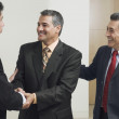 Stock Photo: Hispanic businessmen shaking hands